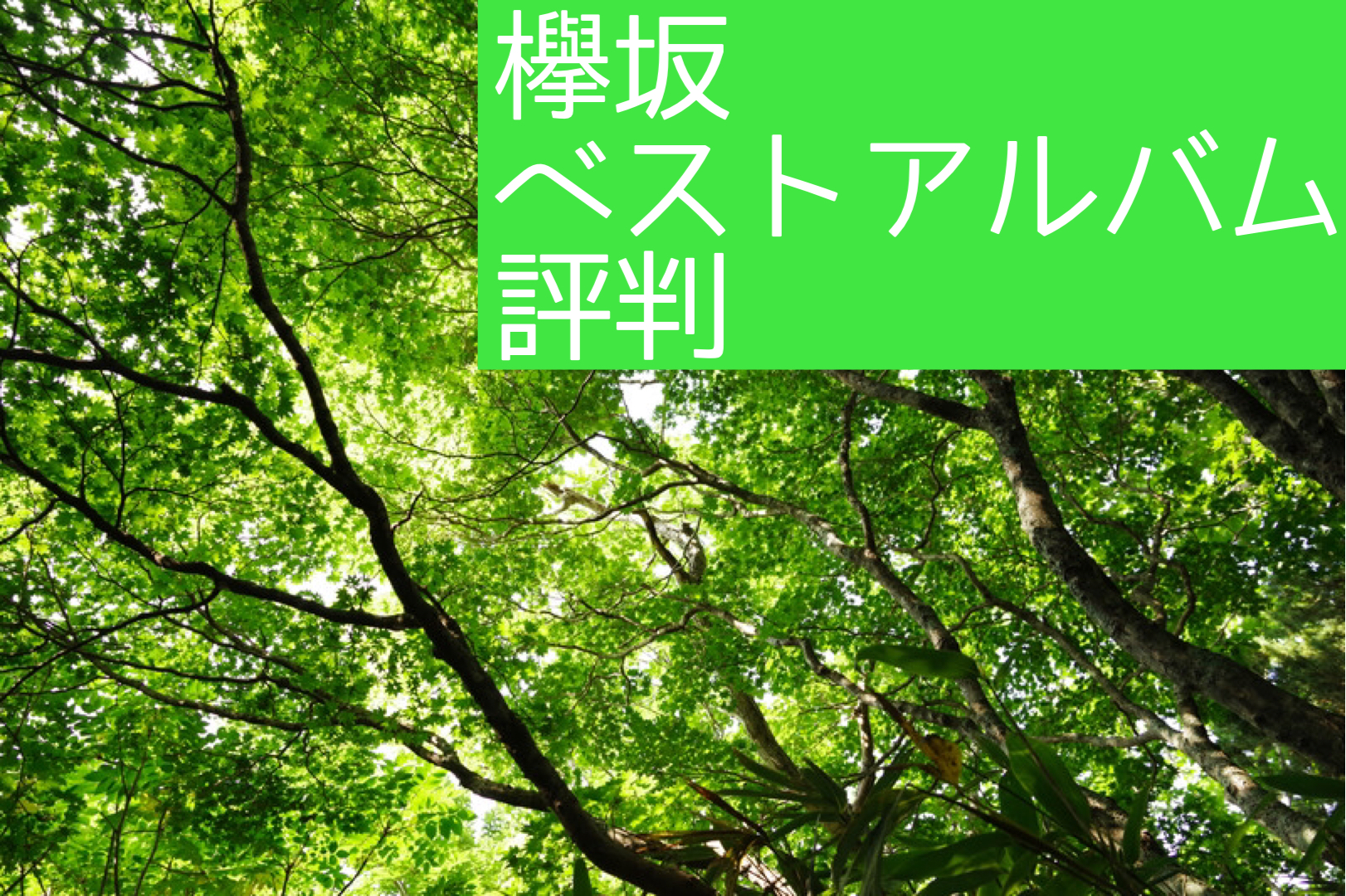 ファン以外の評判は?欅坂46のベストアルバムが発売!【櫻坂】